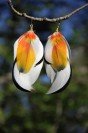 "Earrings ""Fire Bird"""