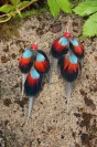 """Earrings """"Heart of the Panthers"""""""