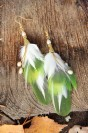 "Feather earrings ""Spring"""